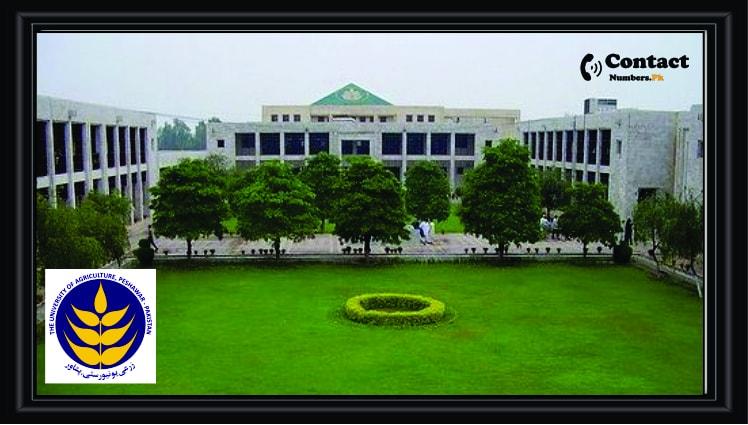 agricultural university peshawar aup