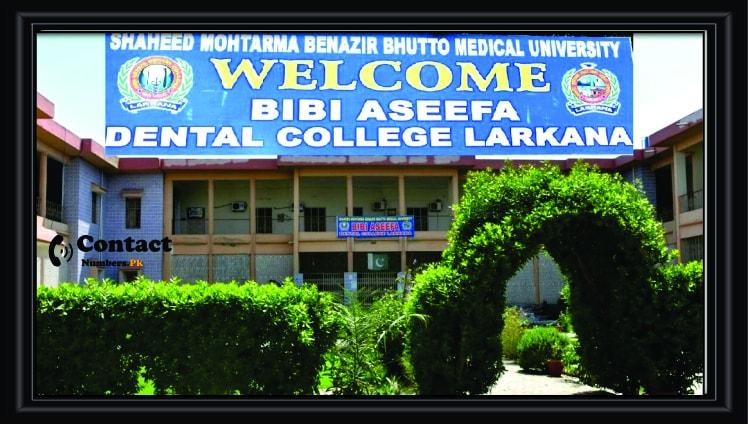 bibi aseefa dental college