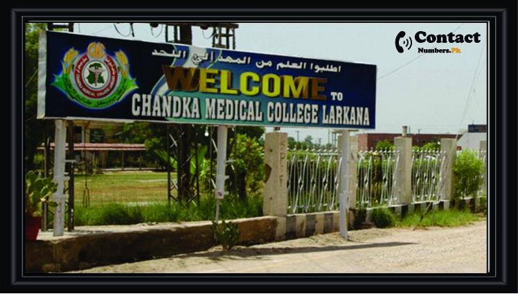 chandka medical college larkana
