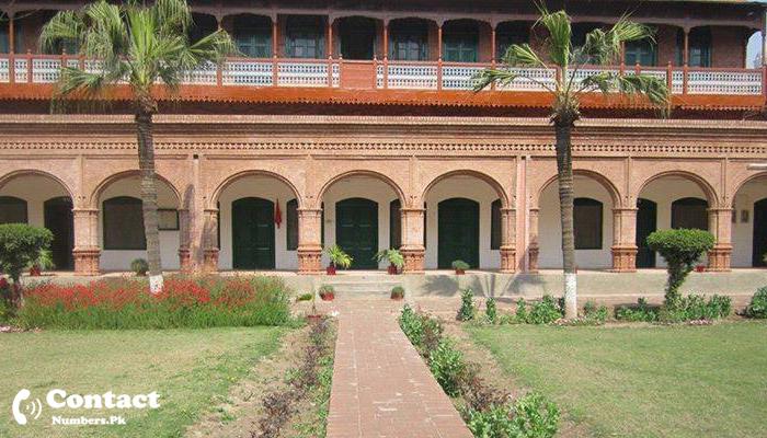 frontier college peshawar contact number