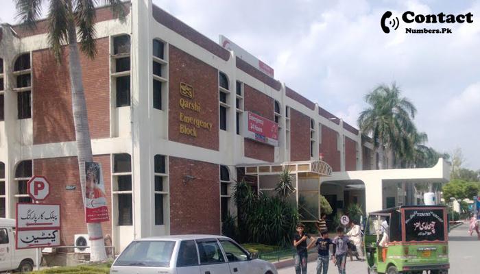 shalamar hospital lahore contact number