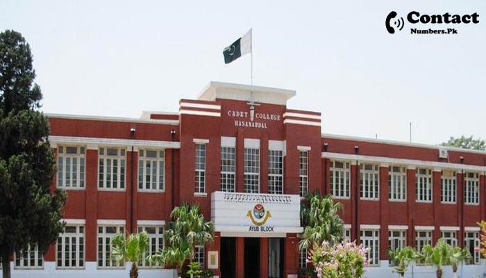 cadet college hasanabdal contact number