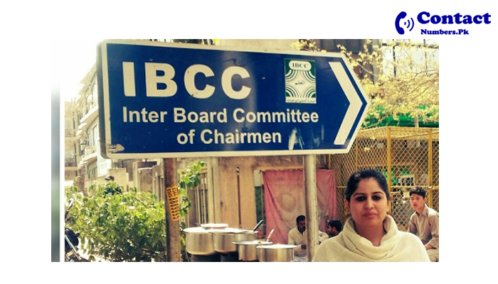 ibcc contact number