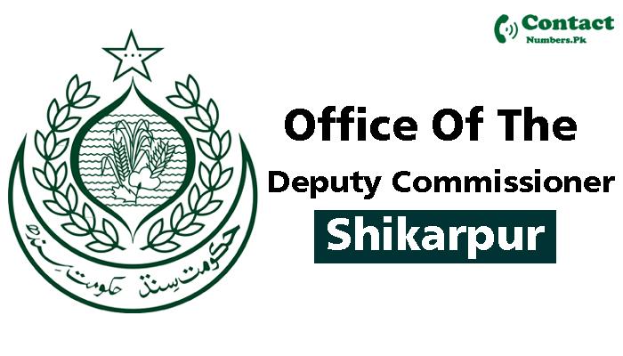 dc shikarpur contact number